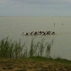 Photo taken at Lake Albert Caravan Park by Jacqui G. on 2/20/2012