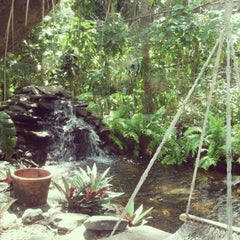Photo taken at grampie's jungle palace by Stephanie C. on 5/3/2012