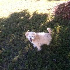 Photo taken at Cunningham Run/Walk Trail by Shanika M. on 10/15/2011