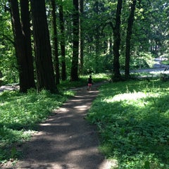 Photo taken at Mt. Tabor Park by Shannon H. on 5/12/2012
