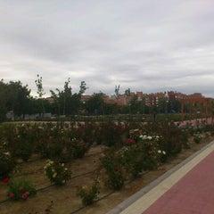 Photo taken at Parque de Ginebra by Pablo R. on 9/3/2011
