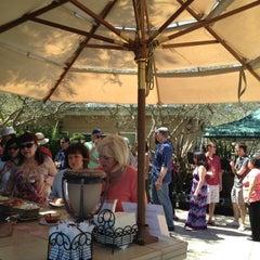 Photo taken at Ceja Vineyards by Javier C. on 4/22/2012