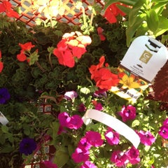 Photo taken at Lowe's Home Improvement by April S. on 5/12/2012