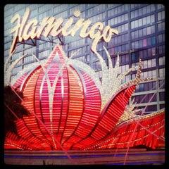 Photo taken at Flamingo Las Vegas Hotel & Casino by Lisa G. on 2/27/2011