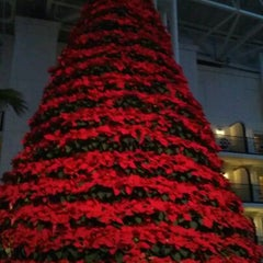 Photo taken at Gaylord Opryland Resort and Convention Center by Meaghan V. on 12/26/2011