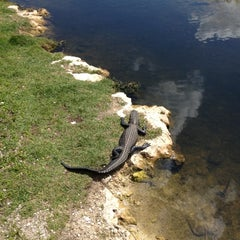 Photo taken at Big Cypress National Preserve by Tim H. on 3/18/2012