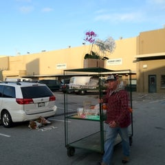 Photo taken at SF Flower Mart by BJ Y. S. on 2/27/2012