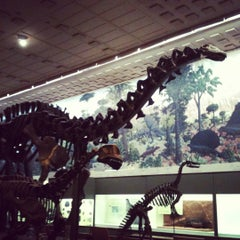 Photo taken at Peabody Museum of Natural History by Breann B. on 6/23/2012