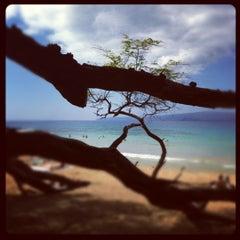 Photo taken at Little Beach by Randy B. on 2/10/2012