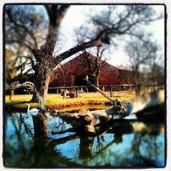 Photo taken at Irene Dairy Farm by Douglas H. on 7/22/2012