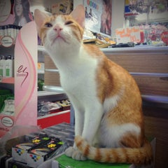 Photo taken at Nice Mart by Ziggy S. on 7/8/2012