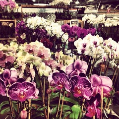 Photo taken at SF Flower Mart by Ian M. on 6/15/2012
