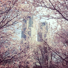 Photo taken at 新宿中央公園 (Shinjuku Central Park) by 48sho on 4/2/2012