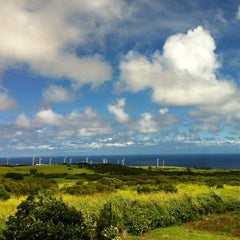Photo taken at Hawi Nice Day Farms by Brooke D. on 8/18/2012