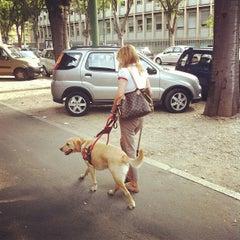 Photo taken at Via Celoria by Roberto D. on 7/31/2012