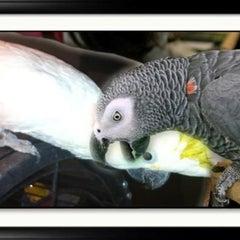 Photo taken at Sea Breeze Pet Center by Steven M. on 4/20/2012