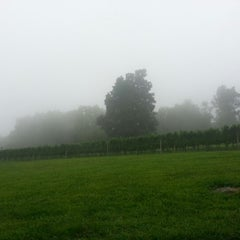 Photo taken at Fox Meadow Winery by Caryn on 8/26/2012