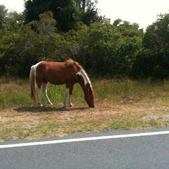 Photo taken at Assateague Island National Campsite Suite A6 by John R. on 7/29/2012
