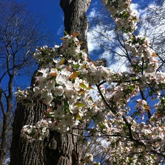 Photo taken at The Great Hill by Linda P. on 4/5/2012