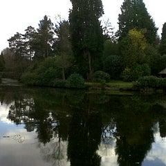 Photo taken at Tatton Park Japanese Garden by Tad W. on 2/29/2012