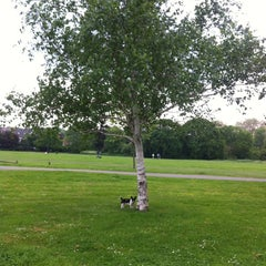 Photo taken at Peckham Rye Common by Kate W. on 5/29/2012