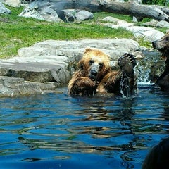 Photo taken at Minnesota Zoo by Ben K. on 5/14/2012