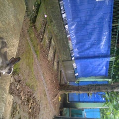Photo taken at Rabbit's play ground by Nurul A. on 3/17/2012