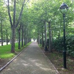 Photo taken at Letenské sady   Letná Park by Adley on 8/9/2012