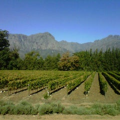 Photo taken at Thelema Wine Farm by Andrea I. on 4/3/2012