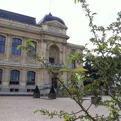 Photo taken at Grande Galerie de l'Évolution by Manuel S. on 5/20/2012
