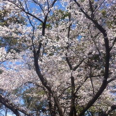Photo taken at 船小屋温泉大橋 by Koji O. on 4/1/2012