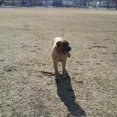 Photo taken at Armatage Park by Lori A. on 3/14/2012