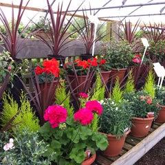 Photo taken at Waterways Garden Centre by Paul B. on 6/24/2012
