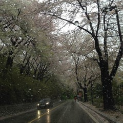 Photo taken at Walkerhill 산책길 by Jung eun M. on 4/21/2012