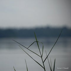 Photo taken at Lower Seletar Reservoir by Leon T. on 7/10/2012