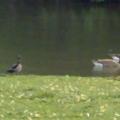 Photo taken at Water Works Park by Brian S. on 4/25/2012