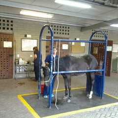 Photo taken at Clinica Veterinaria del ces by Oscar C. on 7/25/2012