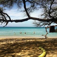Photo taken at Waialea Beach (Beach 69) by Rosi B. on 2/18/2012