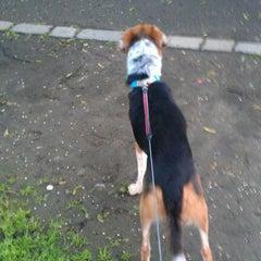Photo taken at Elthorne Park by Lesley A. on 5/16/2012