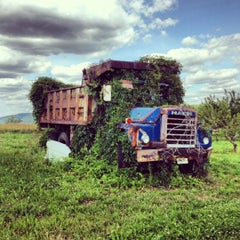 Photo taken at Mackey's Orchard by Peter O. on 6/20/2012