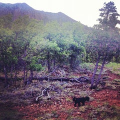Photo taken at Coconino National Forest by Amy Joy C. on 5/20/2012