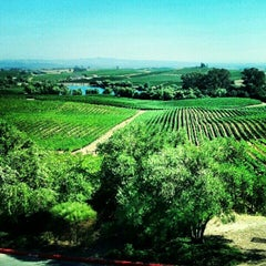 Photo taken at Artesa Vineyards & Winery by Luis G. on 8/11/2012