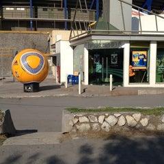 Photo taken at Tigre Tienda by Ilse R. on 5/16/2012