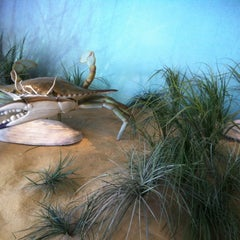 Photo taken at Maryland Science Center by Seth H. on 8/18/2012