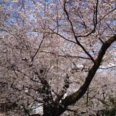 Photo taken at 哲学堂公園 by Yasu on 4/7/2012