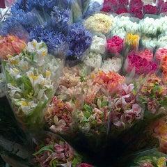 Photo taken at Dangwa Flower Market by Ian E. on 8/25/2012