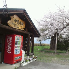 Photo taken at 中荒井駅 (Naka-Arai Sta.) by Toyohiko Y. on 4/29/2012