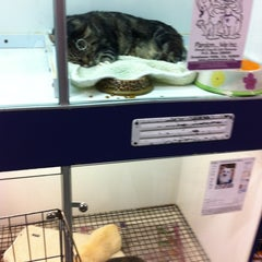 Photo taken at Russo's Pet Experience by Jessica K. on 6/13/2012