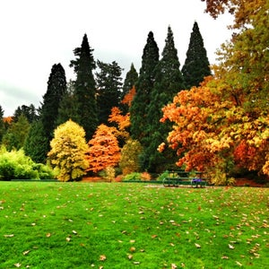 The 15 Best Places for Park in Portland