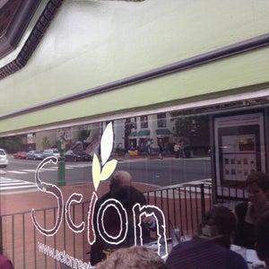 Scion Restaurant